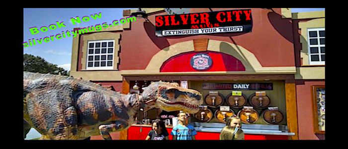 Silver City Mugs FD